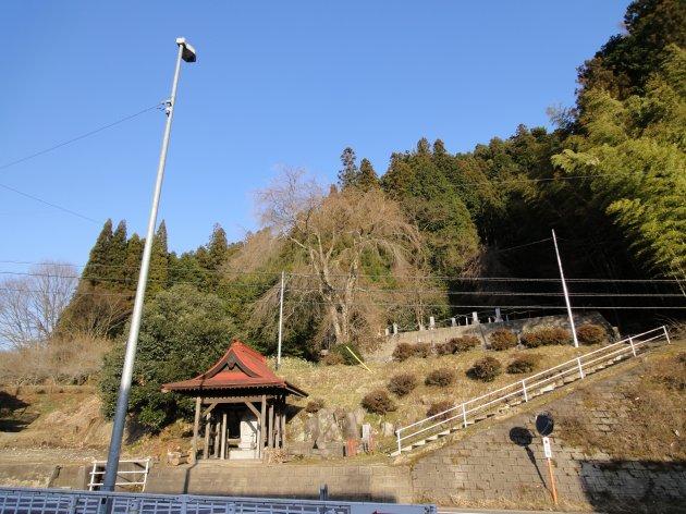 20120408-33.jpg