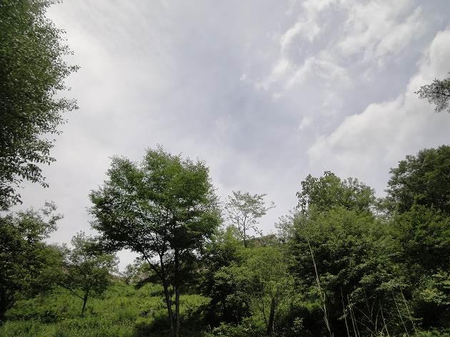 20130706-07.jpg